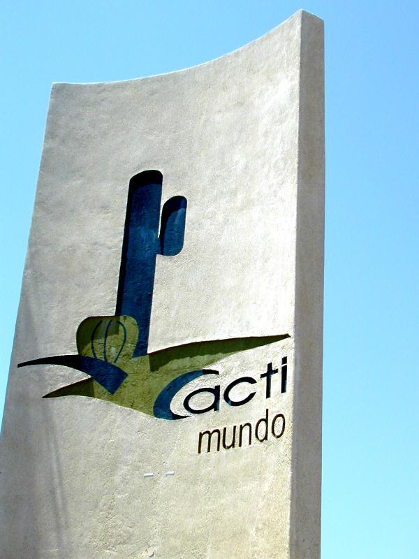 Cacti_Mundo